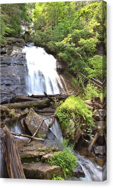 Anna Ruby Falls - Georgia - 4 Canvas Print