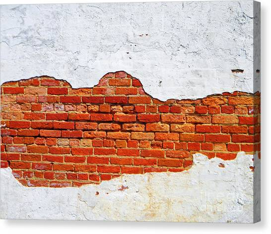 Another Brick In The Wall Canvas Print by Lorraine Heath
