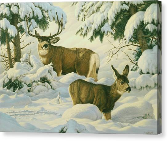 Mule Deer Canvas Print - Another Season by Paul Krapf