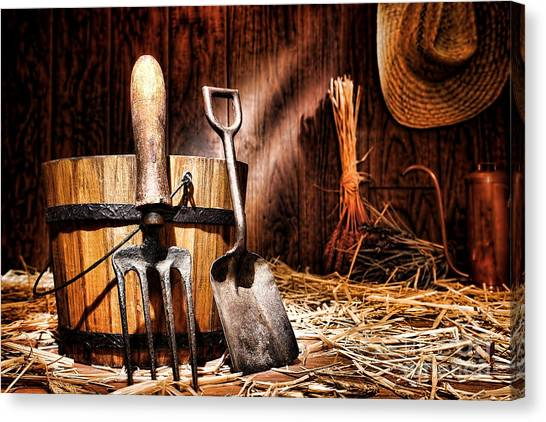 Shovels Canvas Print - Antique Gardening Tools by Olivier Le Queinec