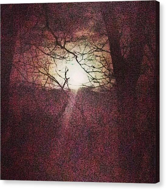 Skyline Canvas Print - Antique Moon by Genevieve Esson