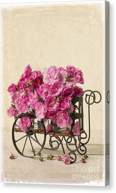 Carts Canvas Print - Antique Rose Cart by Edward Fielding