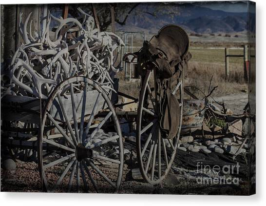 Antlers And My Saddle Canvas Print