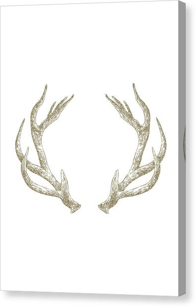 Gold Canvas Print - Antlers by Randoms Print