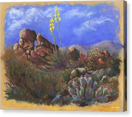 Anza Borrego April Canvas Print