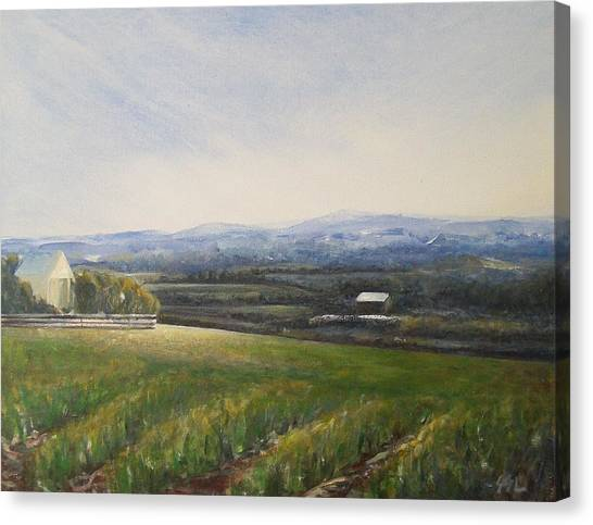 Aotearoa Canvas Print