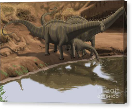Brontosaurus Canvas Print - Apatosaurus Dinosaurs Drinking Water by Michele Dessi