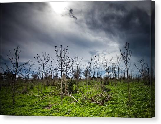 Apocalyptic Landscape Canvas Print