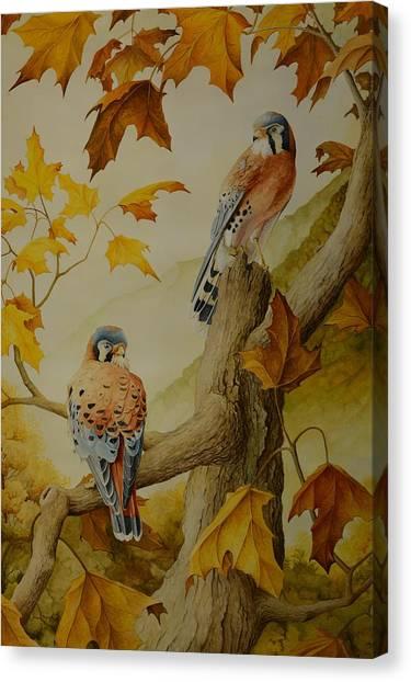 Appalachian Autumn  Canvas Print