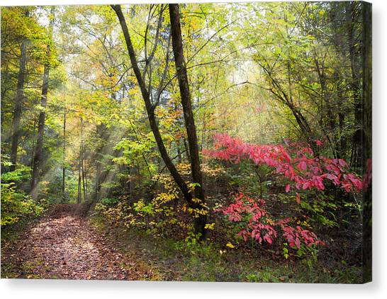 Appalachian Mountain Trail Canvas Print