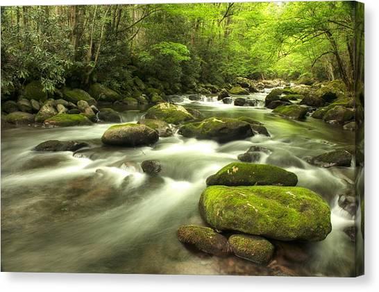 Appalachian Spring Stream Canvas Print
