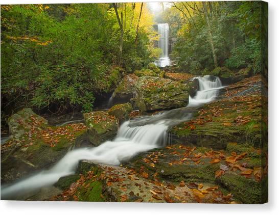 Appalachian Stream Canvas Print by Doug McPherson