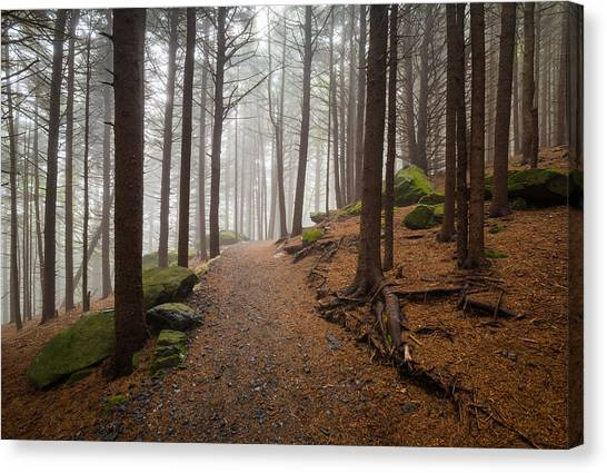 Tn Canvas Print - Appalachian Trail Landscape Photography In Western North Carolina by Dave Allen