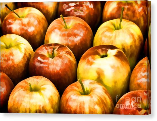 Apple A Day Canvas Print