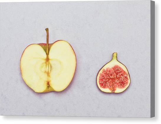 Fruit Canvas Print - Apple And Fig by Tom Gowanlock