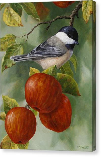 Fruit Baskets Canvas Print - Apple Chickadee Greeting Card 2 by Crista Forest