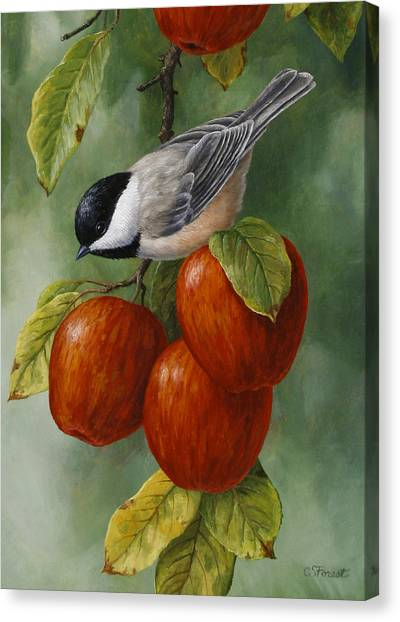 Fruit Trees Canvas Print - Apple Chickadee Greeting Card 3 by Crista Forest