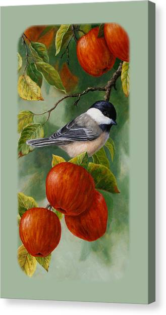 Chickadees Canvas Print - Apple Chickadee Iphone5 Case V2 by Crista Forest