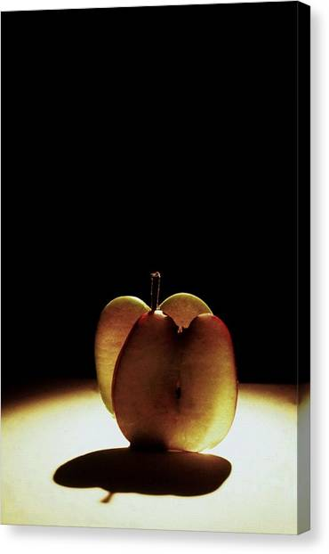 Apple Slices Canvas Print by Alfredo Martinez
