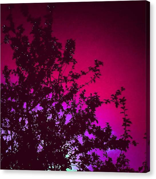 Apple Tree Canvas Print - Apple Tree/pink Background by Candy Floss Happy