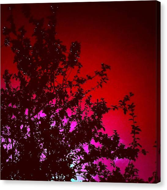 Apple Tree Canvas Print - Apple Tree / Red Background by Candy Floss Happy
