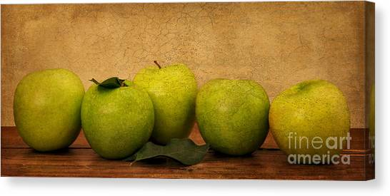 Apples Still Life Canvas Print by Malu Couttolenc