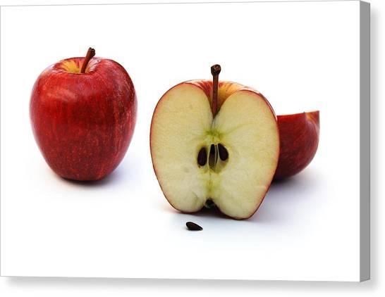Apples Still Life Canvas Print