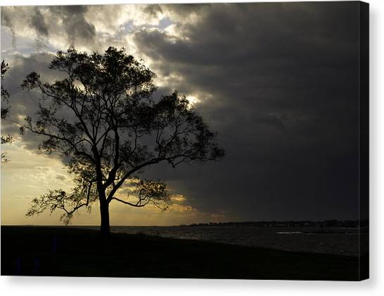 University Of Connecticut Canvas Print - Approaching Storm by David Freuthal