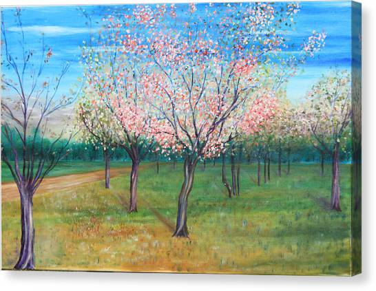 Apricot Orchard Canvas Print