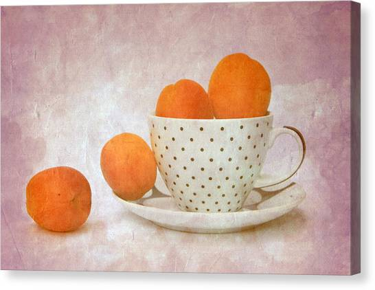 Apricots In A Cup Canvas Print by Angela Bruno