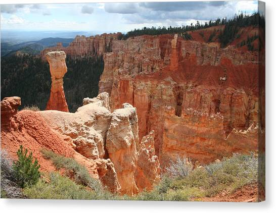 Aqua Canyon II Canvas Print by Mary Gaines
