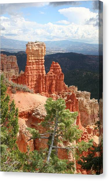 Aqua Canyon IIi Canvas Print by Mary Gaines