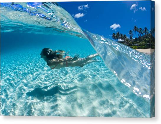 Bikini Canvas Print - Aqua Dive by Sean Davey