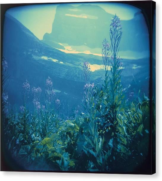 Aquarium Mountain Canvas Print