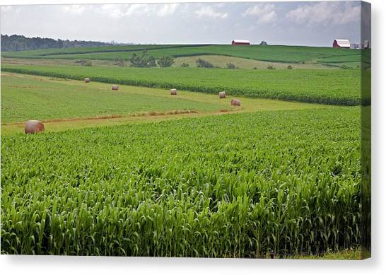 Hay Bales Canvas Print - Arable Farm by Jim West