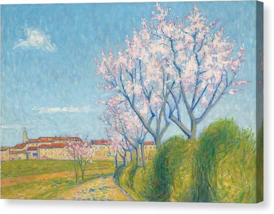 Blooming Tree Canvas Print - Arbes En Fleurs A L'entree De Cailhavel by Achille Lauge