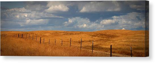 Arbuckle Fence Line Canvas Print
