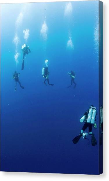 Archaeologists Canvas Print - Archaeologists Diving To Shipwreck by Noaa