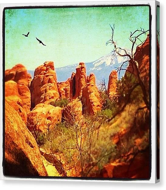 Utah Canvas Print - Arches Np by Jill Battaglia