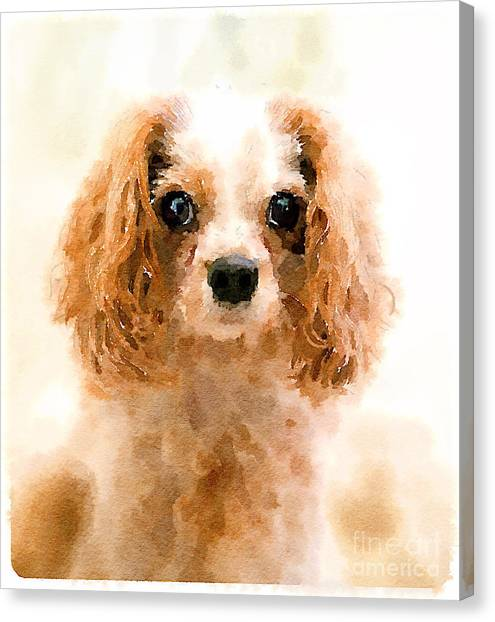 Small Mammals Canvas Print - Archie Watercolour by Jane Rix