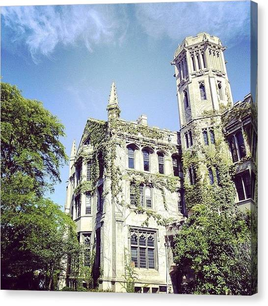 University Of Chicago Canvas Print - University Of Chicago Campus by Jannis Werner