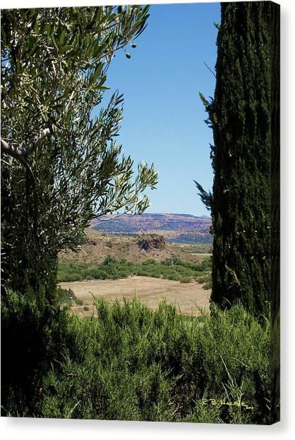 Arcosanti View Canvas Print