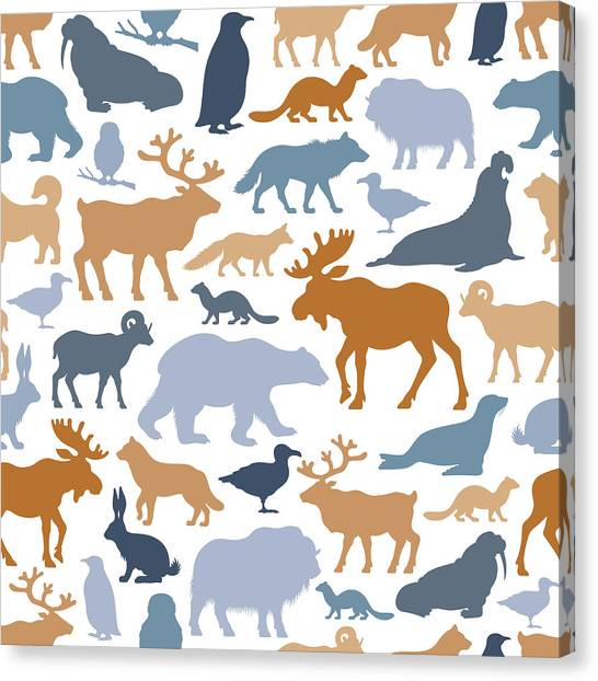 Arctic Animals Pattern Canvas Print by Alonzodesign