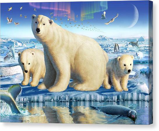 Care Bears Canvas Print - Arctic Splendor by Adrian Chesterman