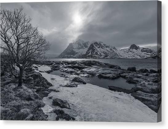 Arctic Spring  Canvas Print