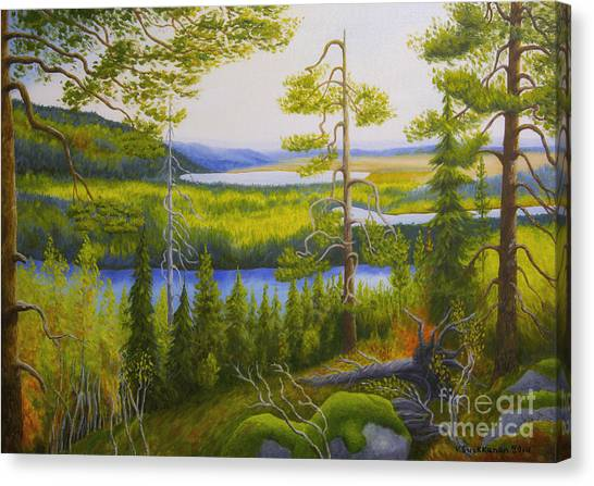 Mossy Forest Canvas Print - Arctic Wilderness by Veikko Suikkanen