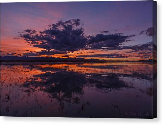 Arizona Beauty Canvas Print