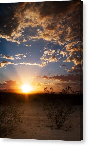 Arizona Desert Sunset Canvas Print