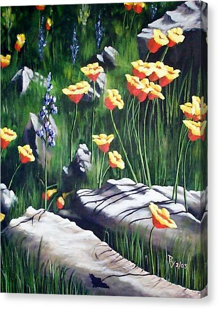 Arizona Poppies Canvas Print