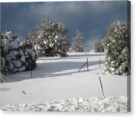 Arizona Snow 3 Canvas Print